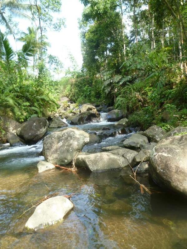 Kali Cimanggis yang telah dibaptis menjadi Sungai Kerit