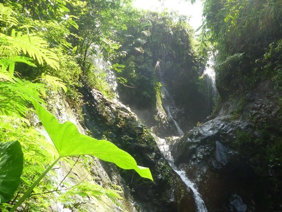 Melestarikan alam dengan menanam pohon guna menjaga kesinambungan air curug yang ada